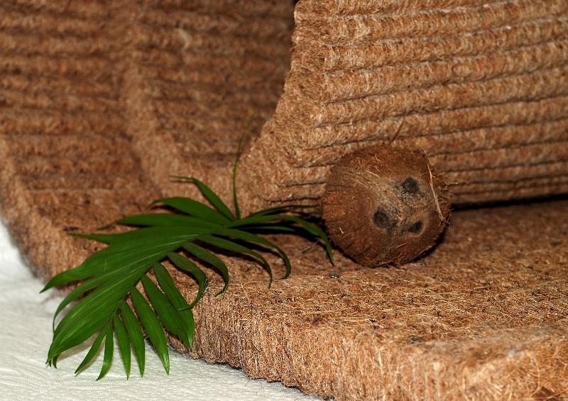 Материал кокосовая койра
