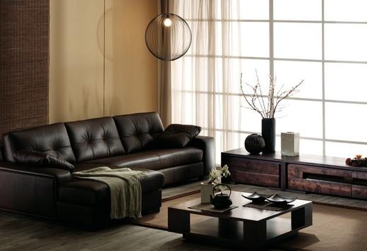 Уголовой тип дивана черного насыщенного цвета